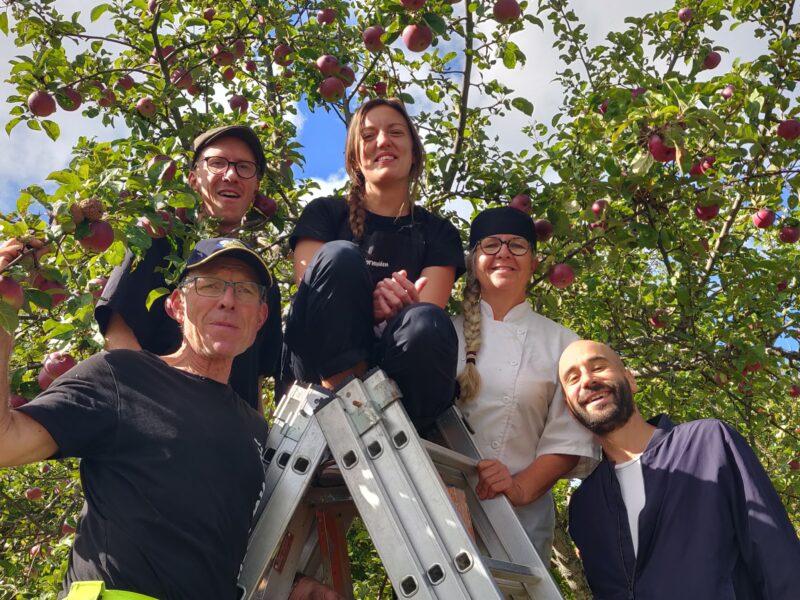 Ekologiska äpplets dag; 26 & 27 september på Hornudden